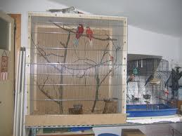 Cage à pêruche